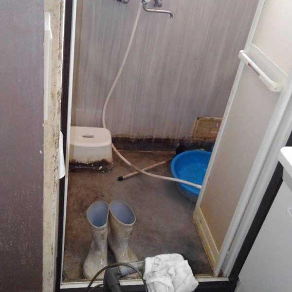 7 作業後 浴室(モーター式トーラー使用)