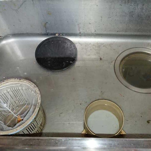 台所排水管詰りにより、水が流れない状態