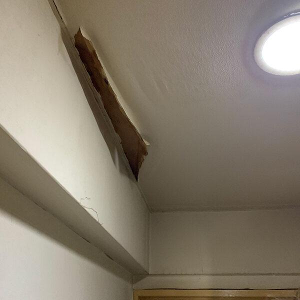 1 玄関天井クロス